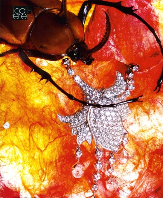 Broche scarabée