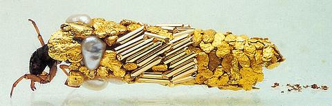 phrygane et or